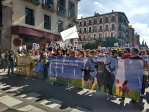 Manifestacion-antitaurina-Madrid-Tauromaquia-Violencia-13-mayo-2017-4