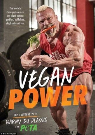 barny-du-plessis-deportista-vegetariano-vegano