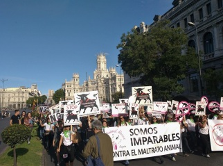 Manifestacion-antitaurina-Madrid-mision-abolicion-16-septiembre-2017-9